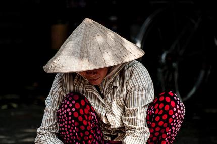 Власти Вьетнама просят жителей больше не есть собак