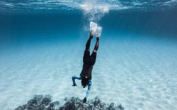 Выбраны лучшие направления для дайвинга по версии Dive Magazine