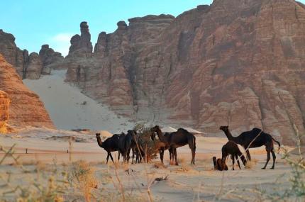 Древний город Аль-Ула в Саудовской Аравии станет курортом