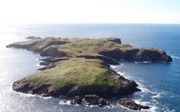 Необитаемый остров в Ирландии продают за 1,25 миллиона евро