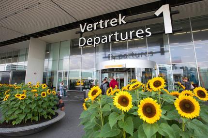 Расписание рейсов в аэропорту Схипхол изменится из-за ремонта ВПП