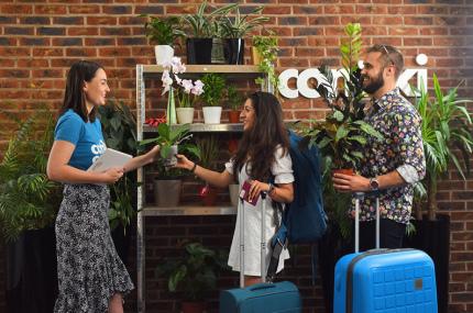 Создан сервис по уходу за комнатными растениями, пока владельцы в отпуске