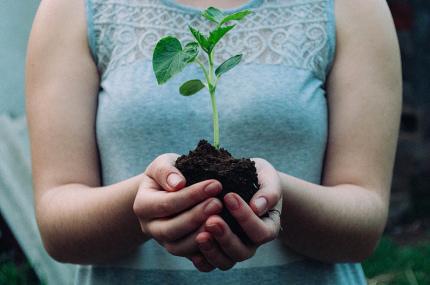 Человечество исчерпало природные ресурсы на 2019 год