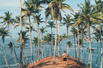 Украинцы могут получить визу на Шри-Ланку бесплатно