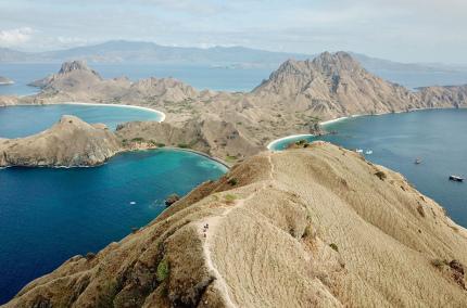 Туристы на острове Комодо будут платить 1000$ за посещение