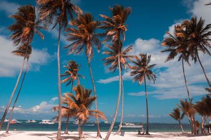 Украинцы смогут путешествовать в Доминику без виз