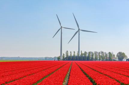 Нидерланды официально отказались от названия Голландия