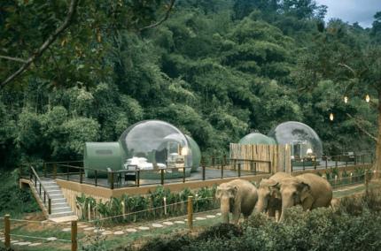В Таиланде открылся отель с номерами в форме прозрачных сфер