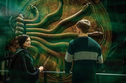 Музей Гарри Поттера в Лондоне впервые покажет гостиную Слизерина