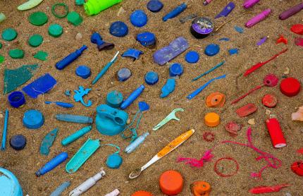 Учёные обнаружили бактерию, которая питается пластиком