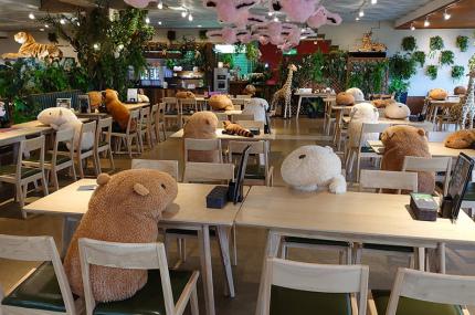 Зоопарк в Японии придумал способ для дистанцирования людей