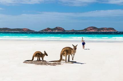 Австралия может остаться закрытой до 2021 года
