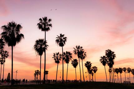В сети запустили трансляцию закатов в Лос-Анджелесе