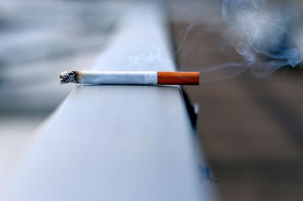 В Праге запретили курить в парках и скверах
