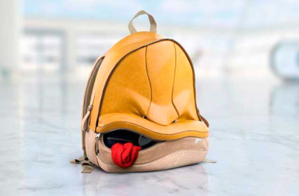 Парижские аэропорты запустили кампанию против забытого багажа