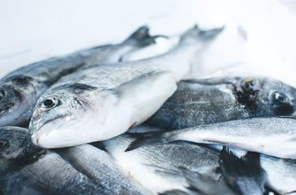 Норвегия вводит ограничения на вывоз рыбы за пределы страны