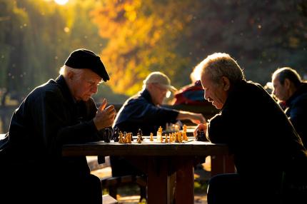 В Нидерландах будут помогать одиноким пожилым людям