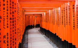Япония введет выездной налог с туристов