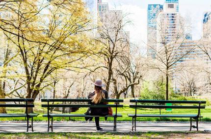 Центральный парк Нью-Йорка закроют для автомобилей